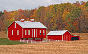 Amish Prints - Little Red  Pennsylvania Dutch Barn Print by Brian Mollenkopf