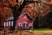 Classic New England Prints - Little Red School House Print by Thomas Schoeller