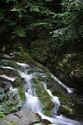 George Taylor - Little River - Falls 1