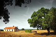 Green Field Prints - Little Rural House Print by Carlos Caetano