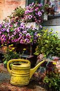 Debra and Dave Vanderlaan - Little Swiss Garden