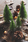 Sandra Cunningham - Little trees with pine cones and leaves