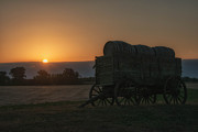 Darlene Bushue - Little Wagon on the...