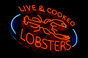 Lobsters Photos - Live and Cooked Lobsters Old Neon Light Store Sign by Olivier Le Queinec
