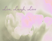 Laugh Mixed Media - Live Laugh Love  by Penny Hunt