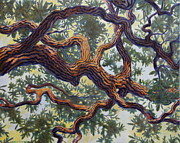 New Orleans Oil Paintings - Live Oak by Andrew Danielsen