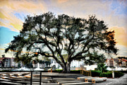 Live Oak Artistic Trendering Print by Dan Friend