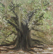 Graves Paintings - Live Oak by Lisa Graves