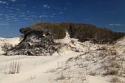 Adam Jewell - Lively Dunes