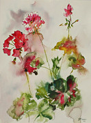 Joyce Ann Burton-sousa Acrylic Prints - Lively Geraniums Acrylic Print by Joyce Ann Burton-Sousa