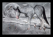 Gray Horse Digital Art Framed Prints - Living in a Pinch II Framed Print by Betsy A Cutler East Coast Barrier Islands