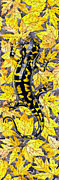 Black Top Painting Posters - LIZARD in YELLOW NATURE - Elena Yakubovich Poster by Elena Yakubovich