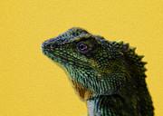 Lizard Print by Karen Walzer