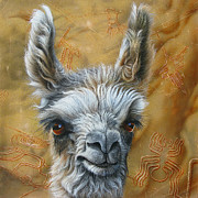 Llama Baby Print by Jurek Zamoyski