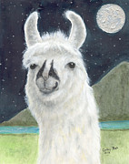 Black Nose Framed Prints - Llama Full Moon Sky Stars Animal Art Framed Print by Cathy Peek