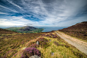 Footpath Prints - Llyn Peninsula Print by Adrian Evans