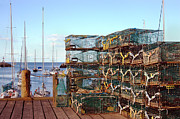Fishing Art - Lobstah Traps by Joann Vitali