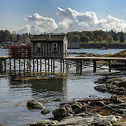 Dick Wood - Lobster dock at Bass...