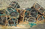 Jane McIlroy - Lobster Pots