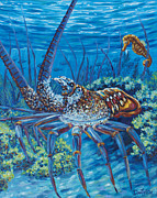 Fish Underwater Paintings - Lobster Season by Danielle  Perry