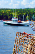 Maine Posters - Lobster Trap in Maine Poster by Olivier Le Queinec