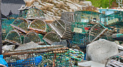Crab Traps Posters - Lobster Traps  Poster by Betsy A Cutler East Coast Barrier Islands
