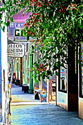 Delta Town Framed Prints - Locke Store Fronts Framed Print by Joseph Coulombe