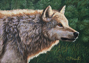 Wolf Painting Posters - Locked Poster by Crista Forest