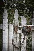 Old Fence Post Posters - Locked Poster by Margie Hurwich
