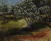 Olive Oil Originals - Lodestar Farm by Darice Machel McGuire