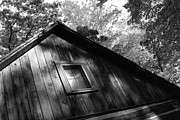 Sheryl Burns - Log Cabin BW version