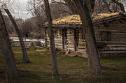 Log Cabin By The River Print by David Kehrli