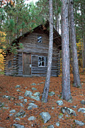 Log Cabin Prints - Log Cabin in the woods Print by Pierre Leclerc