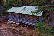 Ron Roberts Photography Prints - Log Cabin Print by Ron Roberts