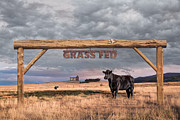Fed Hill Prints - Log Entrance To Grass Fed Angus Beef Ranch Print by Susan McKenzie