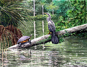 Anhinga Paintings - Log Home by Ted Head