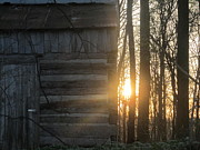 Log Houses Posters - Log House up close and Sunset Poster by Tina M Wenger
