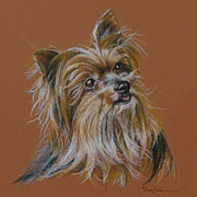 Mary Pastels Posters - Logo Silky Terrier Poster by Mary Dove