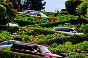 Curvy Road Prints - Lombard Street San Francisco  Print by John McGraw