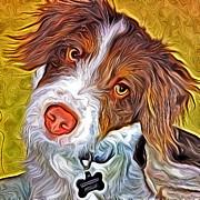 London The Dog Portrait Print by Artistinoz Jodie sims