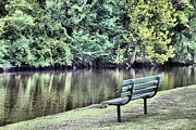 Carolyn Ricks Metal Prints - Lone Bench Metal Print by Carolyn Ricks