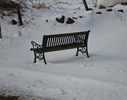 Jenna Mengersen - Lone Bench