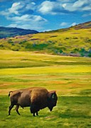Cloudy Skies Prints - Lone Buffalo Print by Jeff Kolker