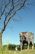 Jensen Prints - Lone elephant sculpture Print by Konni Jensen