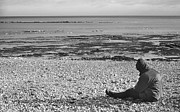Seagull Digital Art Metal Prints - Lone Man Sitting on Pebble Beach Metal Print by Natalie Kinnear
