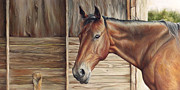 Farmland Painting Originals - Lone Mare by Brent Schreiber