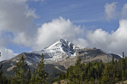 Lone Mountain Peak Print by Robert Weiman