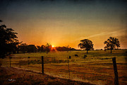 Barry Jones - Lone Star Sunrise