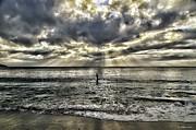 Lone Surfer Print by Bill Baer