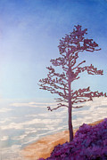 Lone Tree Pastels Prints - Lone Tree Print by Dana Kern